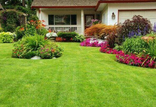 grama-para-jardim